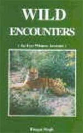Wild Encounters: An Eye-Witness Account
