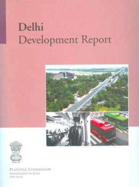 Delhi Development Report