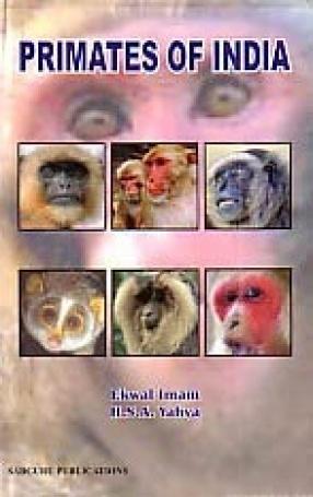 Primates of India
