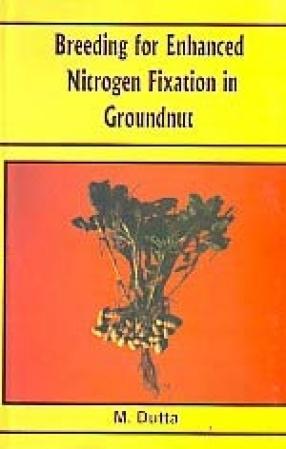 Breeding for Enhanced Nitrogen Fixation in Groundnut
