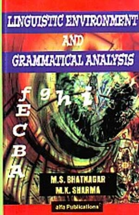 Linguistic Environment and Grammatical Analysis