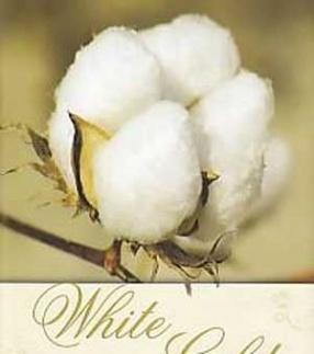 White Gold: -The Cotton Trail