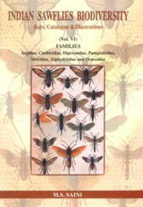 Indian Sawflies Biodiversity: Keys, Catalogue and Illustrations, Families: Argidae, Cimbicidae, Diprionidae, Pamphiliidae, Siricidae, Xiphydriidae and Orussidae,  Volume 6