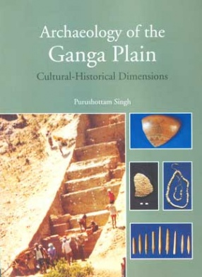 Archaeology of the Ganga Plain: Cultural-Historical Dimensions