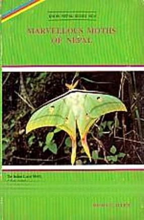 Marvellous Moths of Nepal