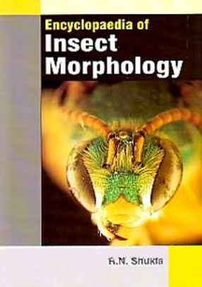 Encyclopaedia of Insect Morphology