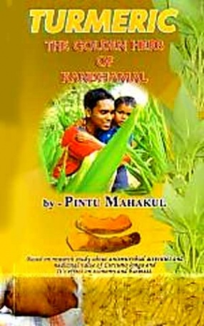 Turmeric: The Golden Herb of Kandhamal