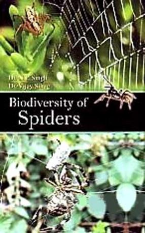 Biodiversity of Spiders