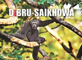 Incredible Dibru-Saikhowa National Park