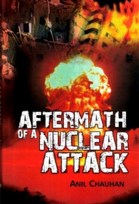 Aftermath of A Nuclear Attack: A Case Study on Post-Strike Operations
