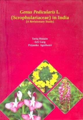 Genus Pedicularis L. (Scrophulariaceae) in India: A Revisionary Study