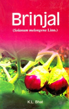 Brinjal: Solanum melongena Linn