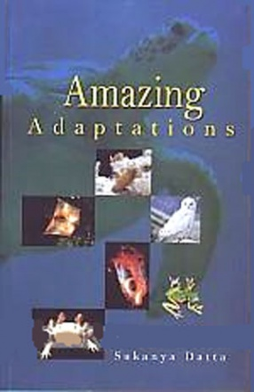 Amazing Adaptations