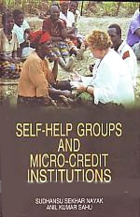 Self-Help Groups and Micro-Credit Institutions