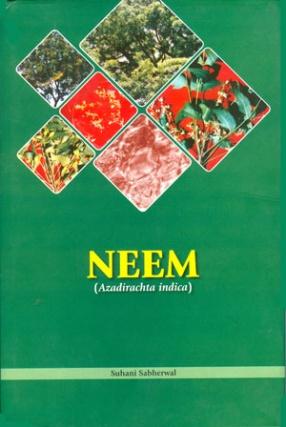 Neem: Azadirachta Indica