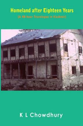 Homeland After Eighteen Years: A 48-Hour Travelogue in Kashmir