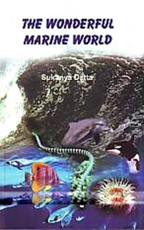 The Wonderful Marine World