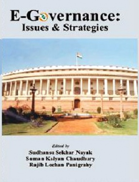 E-governance: Issues and Strategies