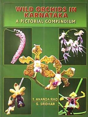 Wild Orchids in Karnataka: A Pictorial Compendium