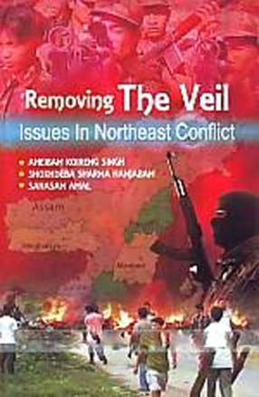 Removing the Veil: Issues in Northeast Conflict