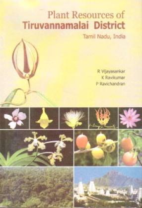 Plant Resources of Tiruvannamalai District Tamil Nadu India