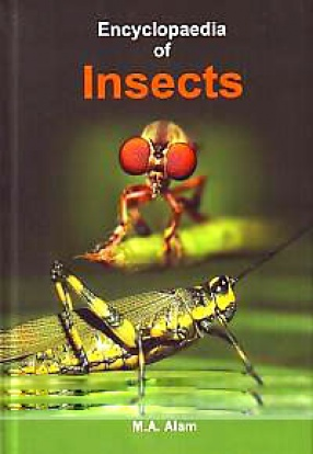 Encyclopaedia of Insects ( In 3 Volumes)