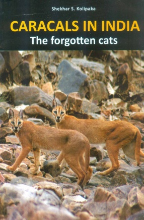 Caracals in India: The Forgotten Cats