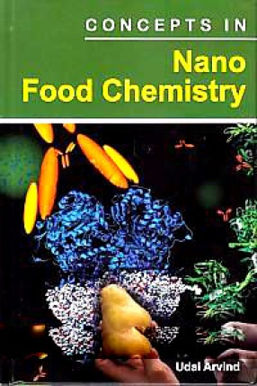 Concepts in Nano Food Chemistry