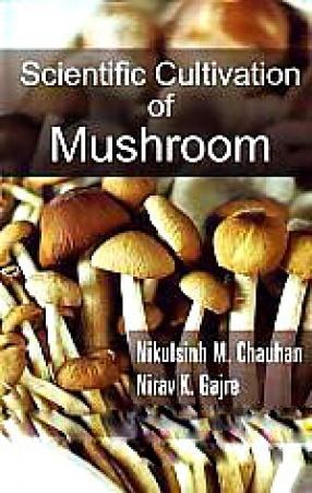 Scientific Cultivation of Mushroom