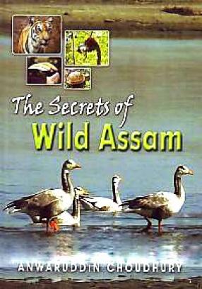 The Secrets of Wild Assam