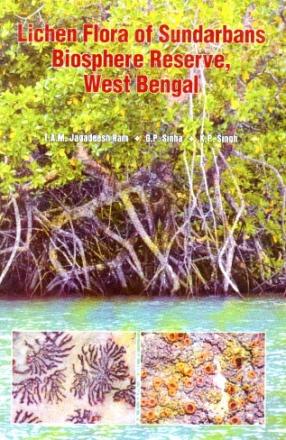Lichen Flora of Sundarbans Biosphere Reserve West Bengal