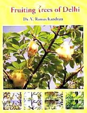 Fruiting Trees of Delhi