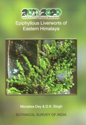 Epiphyllous Liverworts of Eastern Himalaya