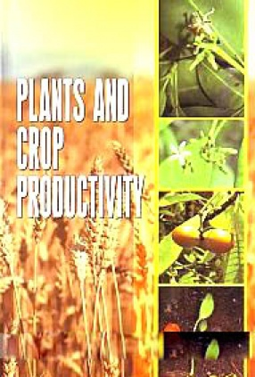 Plants and Crop Productivity