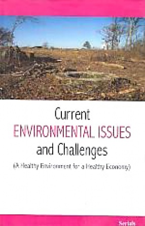 Current Environmental Issues and Challenges: A Healthy Environment for a Healthy Economy
