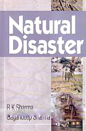 Natural Disaster: Institutional Building for Mitigating the Impact on Vulnerable Sections