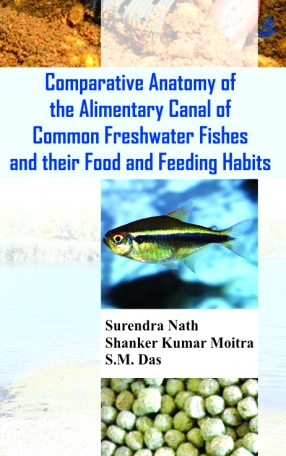 Comparative Anatomy of the Alimentary Canal of Common Freshwater Fishes and Their Food and Feeding Habits