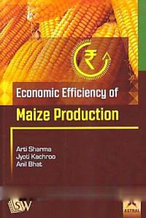 Economic Efficiency of Maize Production
