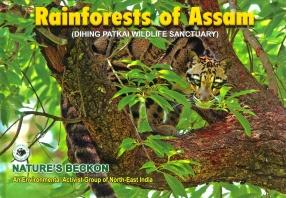 Rainforests of Assam: Dihing Patkai Wildlife Sanctuary