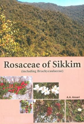Rosaceae of Sikkim: Including Brachycaulaceae