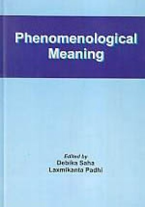 Phenomenological Meaning