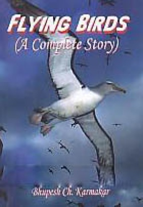 Flying Birds: A Complete Story