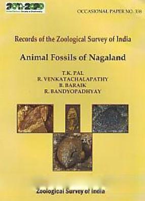 Animal Fossils of Nagaland