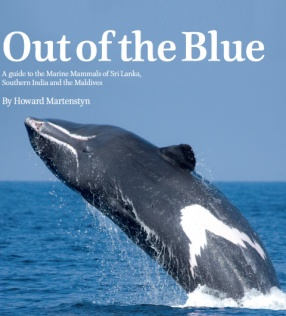 Out of the Blue: A Guide to the Marine Mammals of Sri Lanka, Southern India and the Maldives