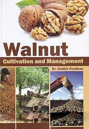 Walnut: Cultivation and Management