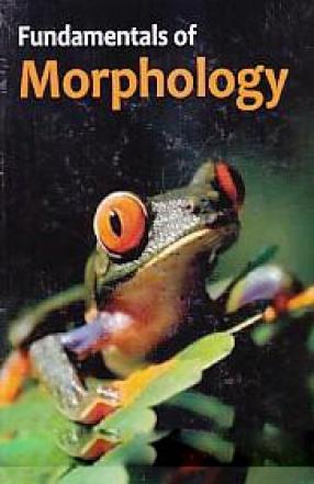 Fundamentals of Morphology