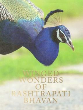 Winged Wonders of Rashtrapati Bhavan
