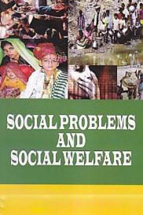 Social Problems and Social Welfare