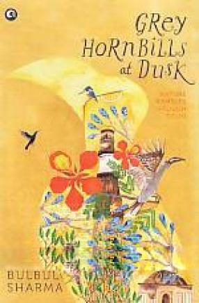 Grey Hornbills at Dusk: Nature Rambles Through Delhi