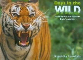 Days in the Wild